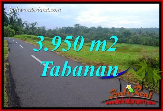 Tanah Murah Dijual di Tabanan Bali TJTB402