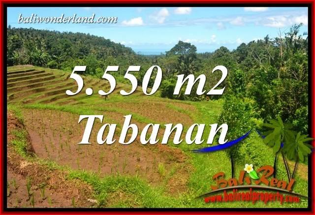Tanah Murah  di Tabanan Bali Dijual 55.5 Are View Laut dan Sawah
