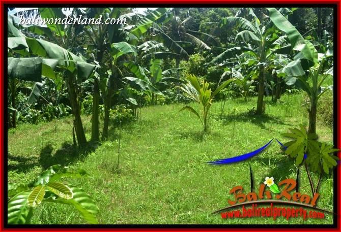 Tanah Murah Dijual di Tabanan Bali Untuk Investasi TJTB405