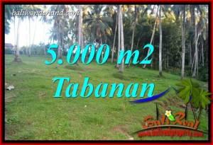 Tanah di Tabanan Dijual Murah 5,000 m2 di Tabanan Selemadeg