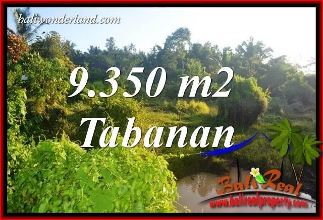 JUAL Tanah di Tabanan 93.5 Are View Kebun dan Sawah