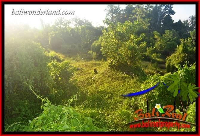 Tanah Murah Dijual di Tabanan Bali TJTB409