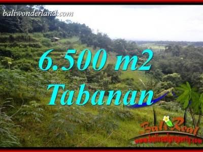 Tanah Murah di Tabanan Bali Dijual Untuk Investasi TJTB416