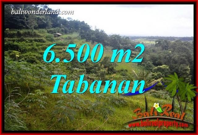 Dijual Tanah Murah di Tabanan Bali Untuk Investasi TJTB416