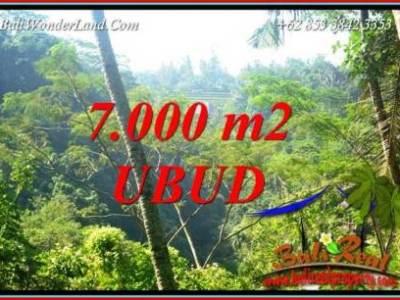 JUAL Murah Tanah di Ubud 7,000 m2 View Tebing dan sungai