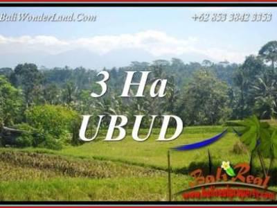 JUAL Tanah di Ubud Untuk Investasi TJUB718