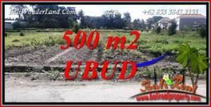 Tanah Murah di Ubud Dijual Untuk Investasi TJUB720