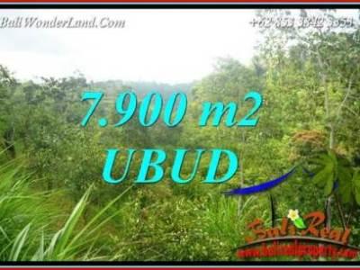 JUAL Murah Tanah di Ubud Bali Untuk Investasi TJUB729