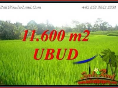 Dijual Murah Tanah di Ubud Bali TJUB732