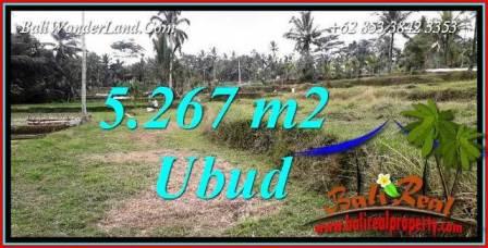 JUAL Murah Tanah di Ubud Bali 5,267 m2 View sawah