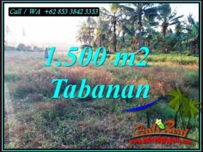 DIJUAL TANAH DI TABANAN BALI Untuk INVESTASI TJTB497