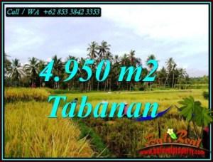 TANAH MURAH DIJUAL di TABANAN 4,950 m2 di MARGA TABANAN
