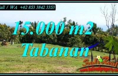 JUAL TANAH DI TABANAN BALI 15,000 m2 di SELEMADEG BARAT