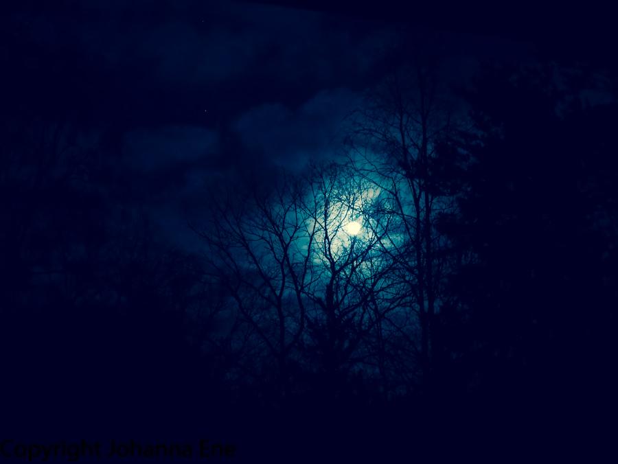 Måne Foto Johanna Ene