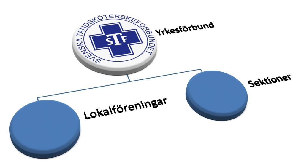 Svenska Tandsköterskeförbundet STF lokalföreningar sektioner