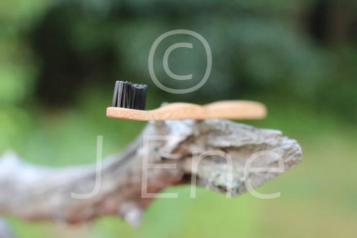 Naturbild på tandborste i bambu som balanserar på en trädgren.