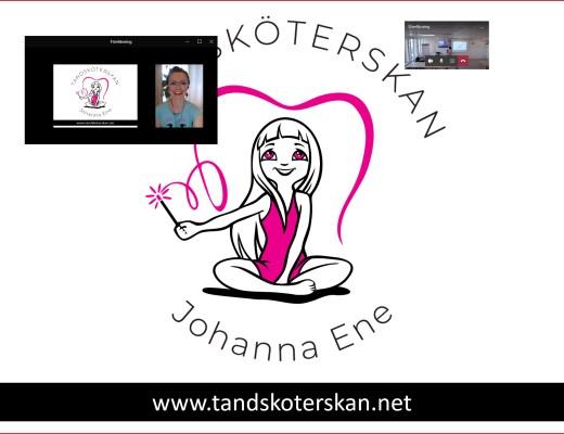 Difital distansföreläsning med tandsköterska Johanna Ene.