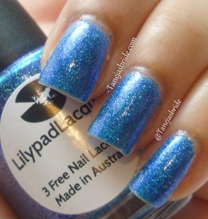 LilyPadAzureDreams2