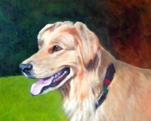 pet portrait painting in oil golden retriever with mouth open and sun reflecting of golden fur