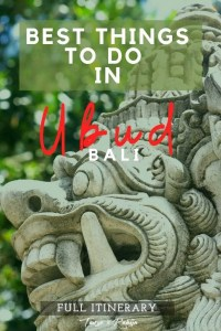 Best things to do in Ubud, Bali - pin2