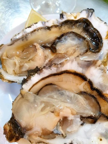 What to eat in Mallorca - Foodie Guide - Oysters at Santa
