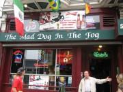 Mad Dog in the Fog Bar Haight