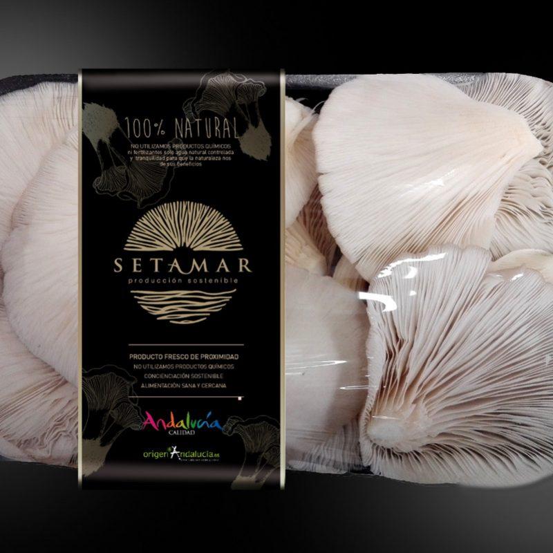 Setamar, diseño sostenible, etiqueta de producto