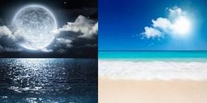 Die planetarische Sekte bzw. Sektion