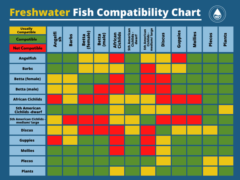 Fish Compatibility Chart For Freshwater And Saltwater Pets