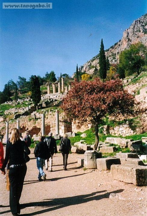 Delfi -Tempio di Apollo, via sacra