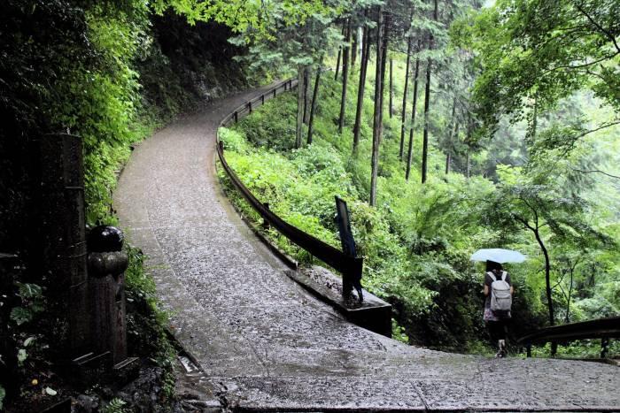 Sous la pluie au Mont Takao