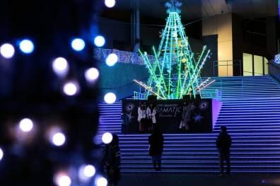 Noël Odaiba (6)