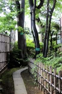 Ichigayakameokahachimangu (8)