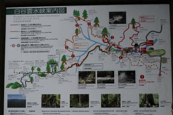 Yakushima Randonnée 13 juillet 2017 (4)