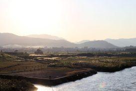 2017-10-27 Arashiyama Kyoto (23)