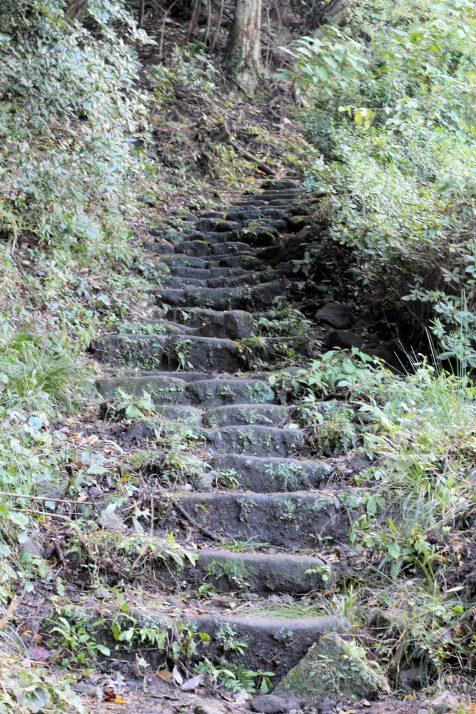 Mont Nokogiri (12)