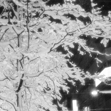 Neige à Takadanobaba (8)