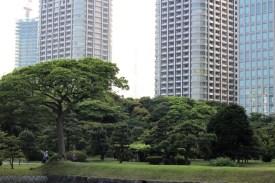 Hamarikiyu Gardens Tokyo (12)