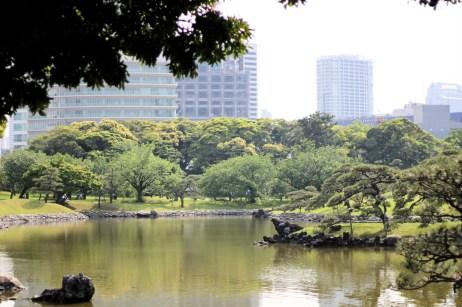 Hamarikiyu Gardens Tokyo (6)
