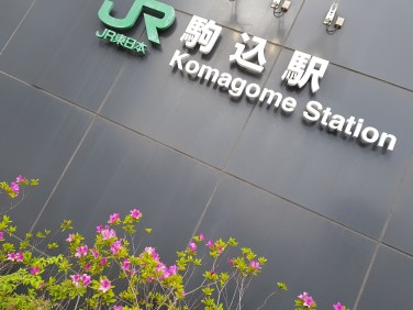 Yamanote Run (1)
