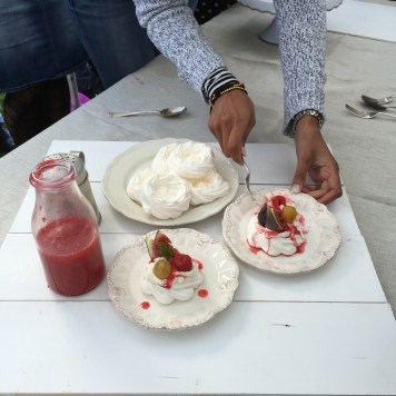 Pavlova with fresh figs and raspberry coulis 2