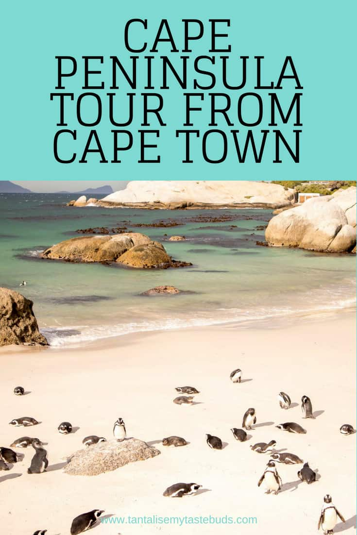 Cape Peninsula Tour from Cape Town pin
