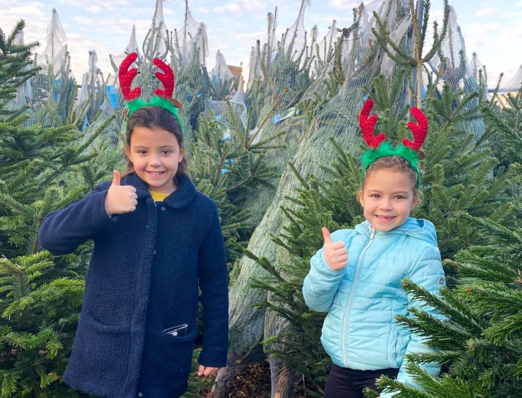 van sintvoorbereidingen tot een kerstboom