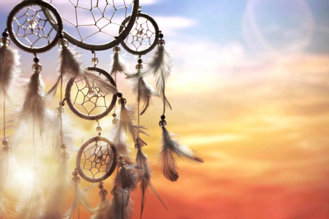 de kracht van veren dromenvanger