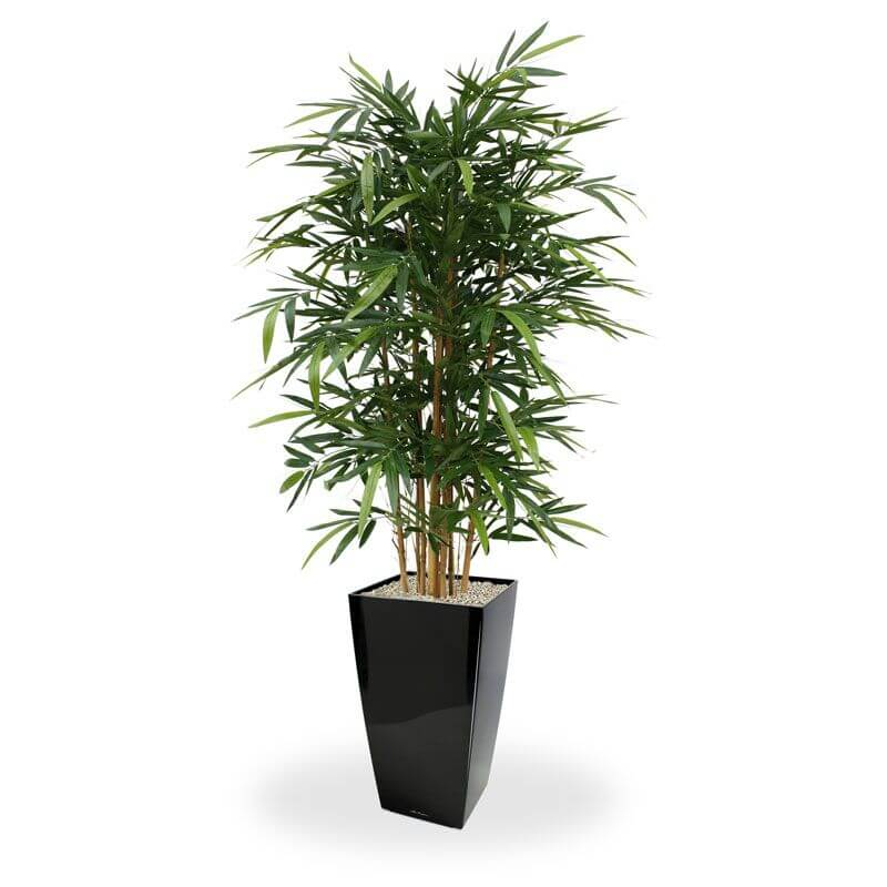 kunstbomen bamboe