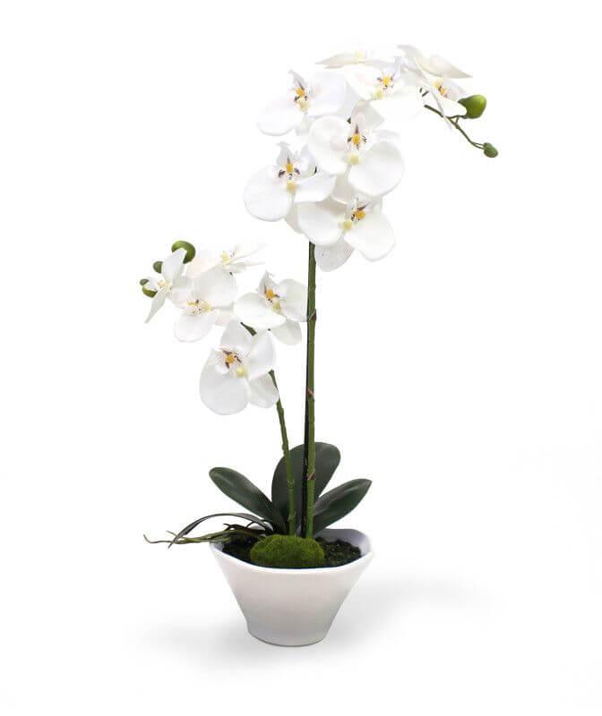 kunstplanten orchidee