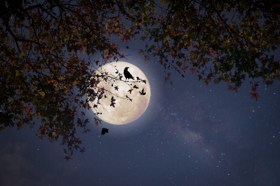 volle maan op 30 november