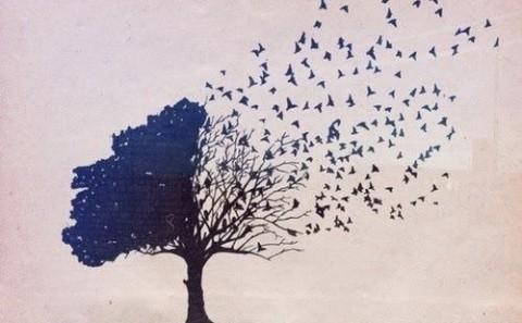 Practica el Aparigraha para sentirte más liberado
