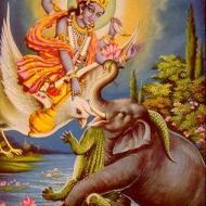 El elefante Gajendra
