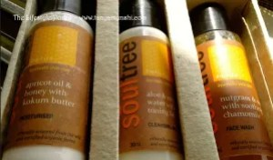 SoulTree Product Review - by Tanya Munshi